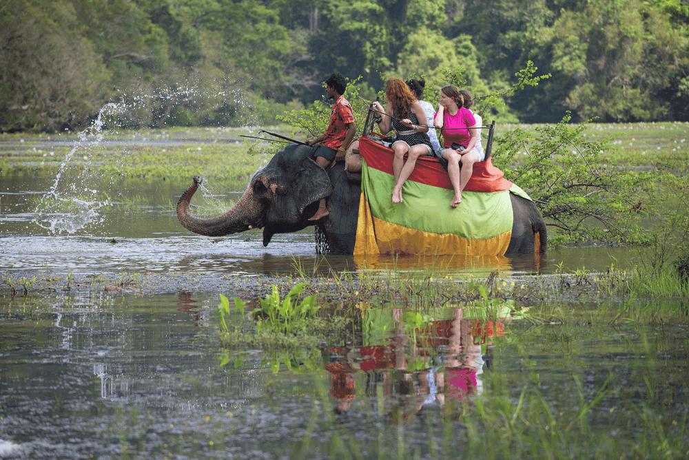 Elephant Back Safari Sigiriya